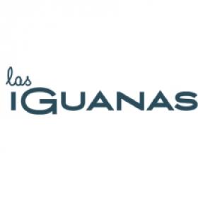 iguanas-client4